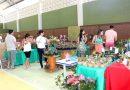 X Exposição de Orquídeas encanta visitantes em Santa Maria de Marechal